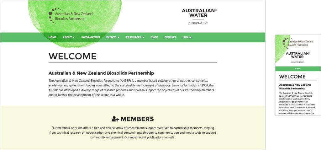Website Design - BS
