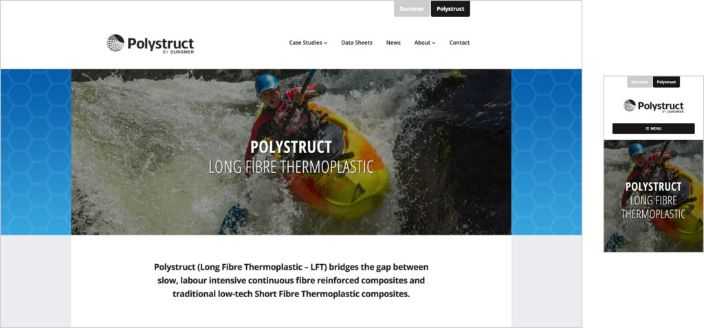 Website Design - Polystruct